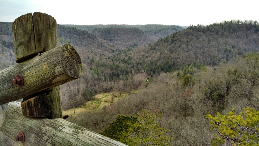 Overlooking Charit Creek Lodge into the Big South Fork