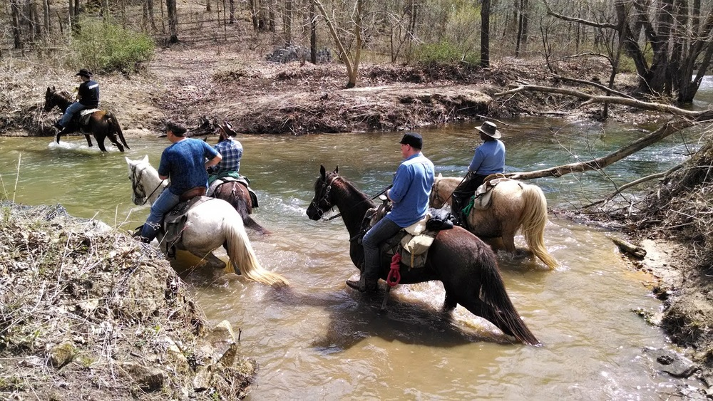 Group riding horses across river in the Big South Fork NRRA
