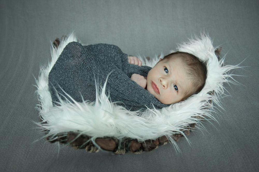 Hamilton-newborn-photography-photographer-basket-sheepskin.jpg