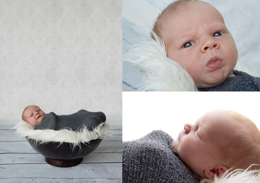 Tamahere-baby-photography.jpg