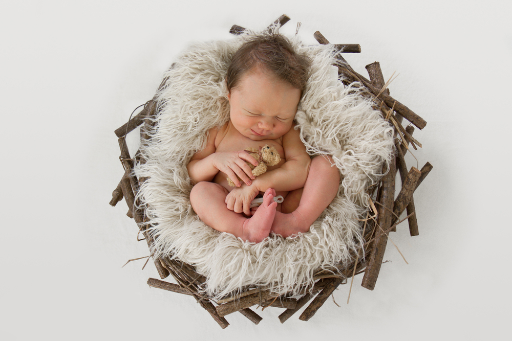 Te-Awamutu-newborn-photographer-baby-snuggled-in-basket-with-teddy-bear.jpg