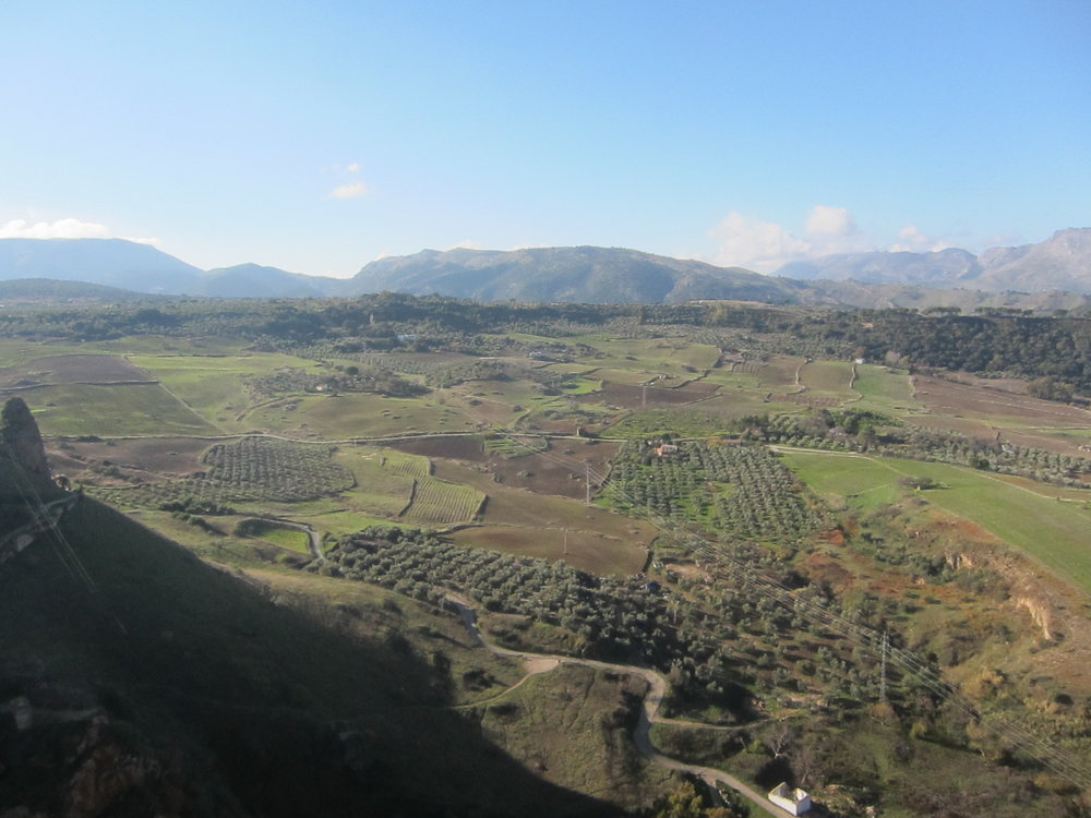 Stunning views off the cliffs of Ronda