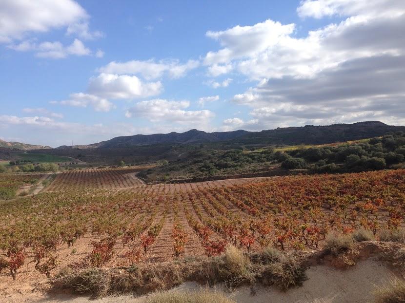 La Rioja in a picture