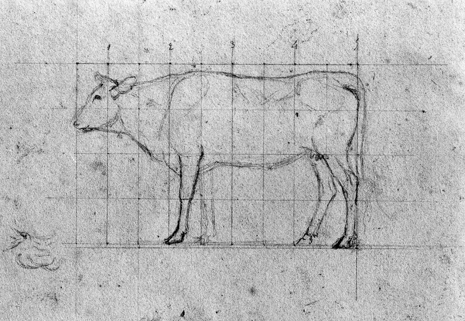(Sketch of a cow | Antoine-Louis Barye)