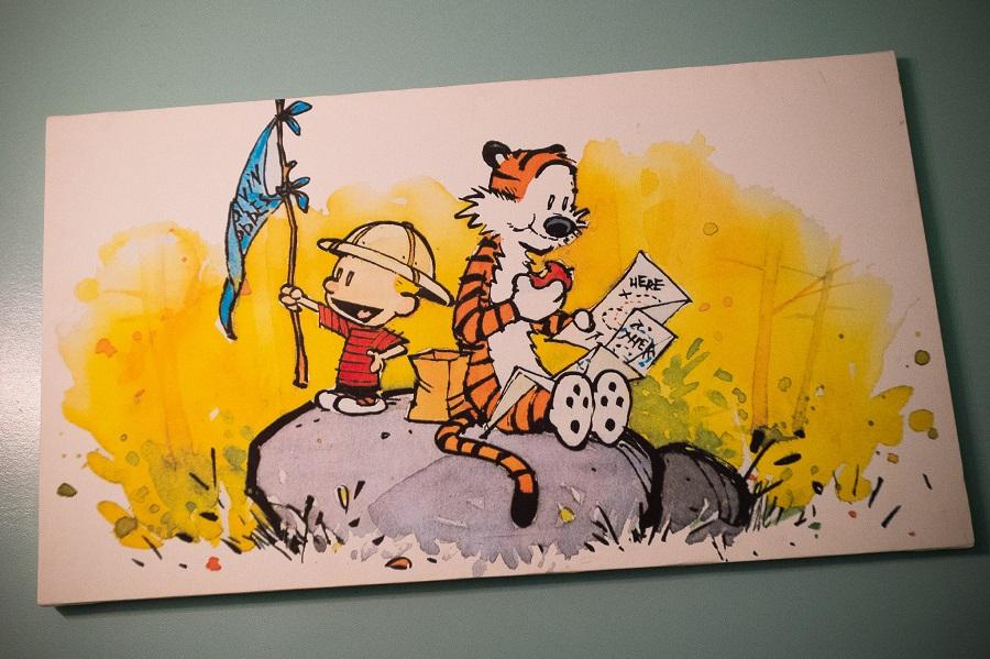 ( Calvin & Hobbes  | Sean Davis)