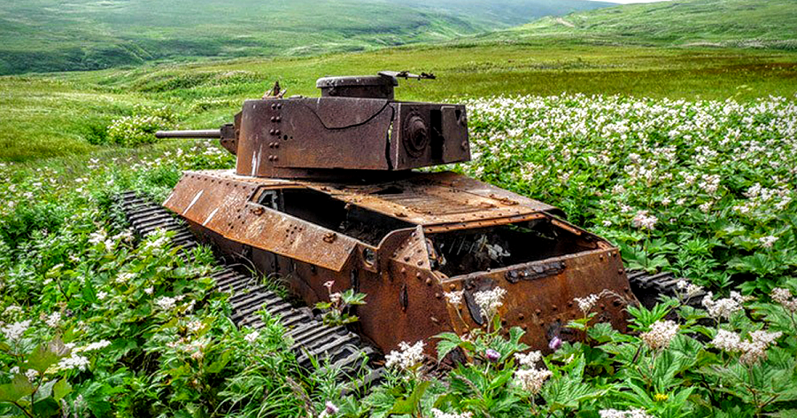 """Flowers bloom, even when there's an old WWII """"boom"""" tank in the way."""
