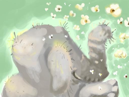 ( Popcorn Elephant    Pondocus)