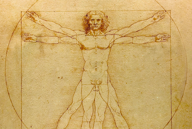 (The Vitruvian Man | Leonardo da Vinci)