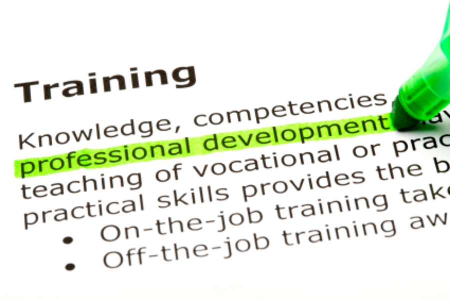 PROFESSIONAL DEVELOPMENT PROGRAMMES