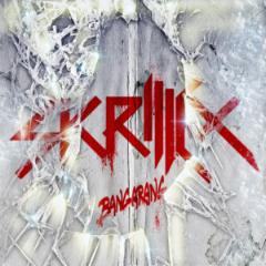 Skrillex_-_Bangarang_(EP).png