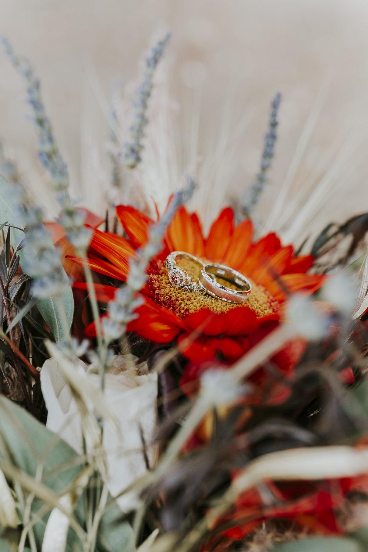 David_Ruthanna_Highlandspringsresort__Wedding_2016_1.jpg