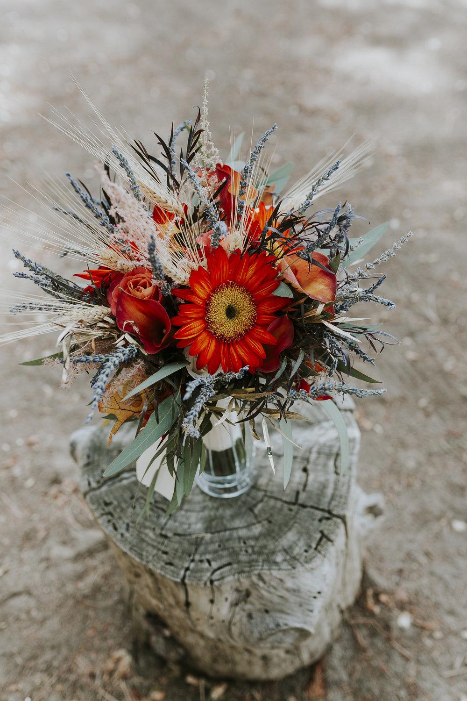 David_Ruthanna_Highlandspringsresort__Wedding_2016_2.jpg