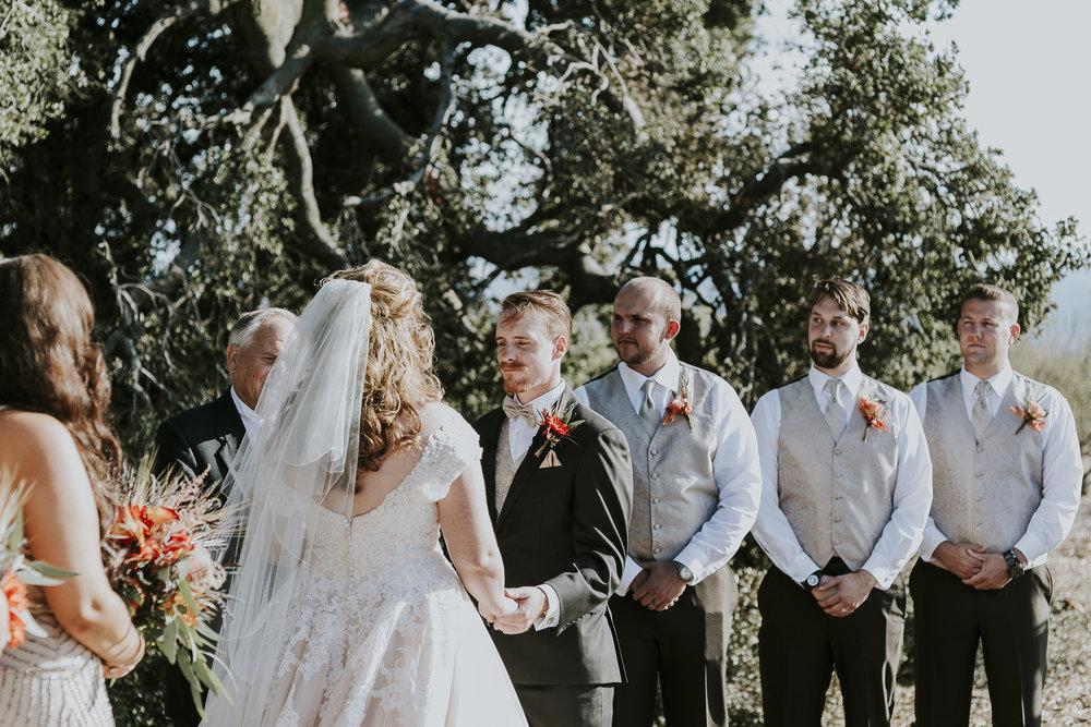 David_Ruthanna_Highlandspringsresort__Wedding_2016_77.jpg
