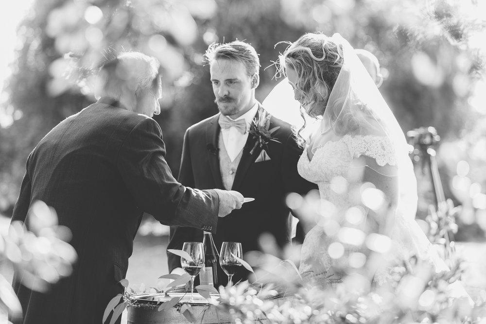 David_Ruthanna_Highlandspringsresort__Wedding_2016_79.jpg