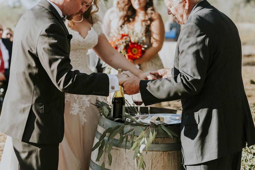 David_Ruthanna_Highlandspringsresort__Wedding_2016_81.jpg