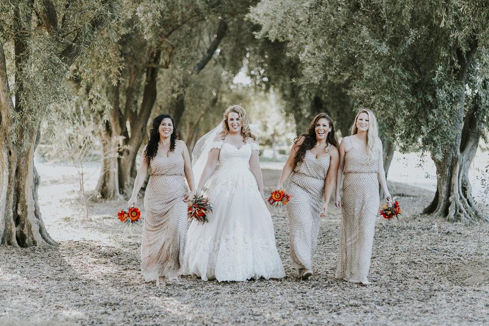 David_Ruthanna_Highlandspringsresort__Wedding_2016_97.jpg