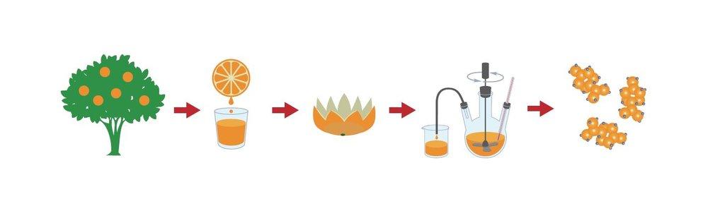 nachwachsender Rohstoff Orangenöl sustainability ökologie umweltfreundlich