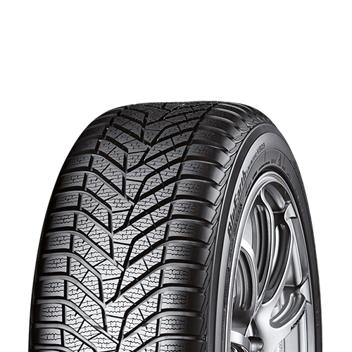 BluEarth Winter V905