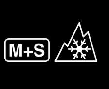 MS 3PMSF.JPG