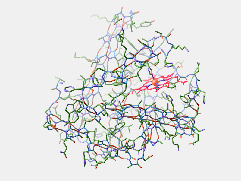 My attempt to mimic Geis' painting using UCSF Chimera and Maxon Cinema 4D (PDB ID: 1MBN). The alpha helices are difficult to recognize because they overlap with the atoms in the back.