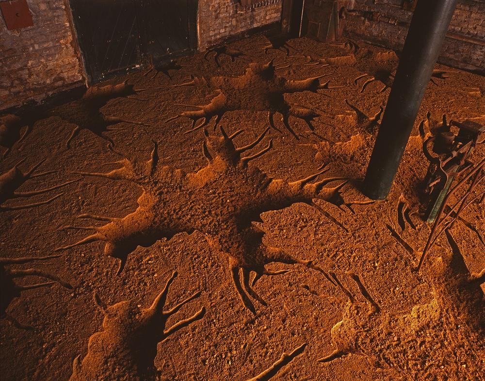 1994 'Untitled' sand 914cm x 750cm x 15cm 1500px w highest qual prog(detail).jpg