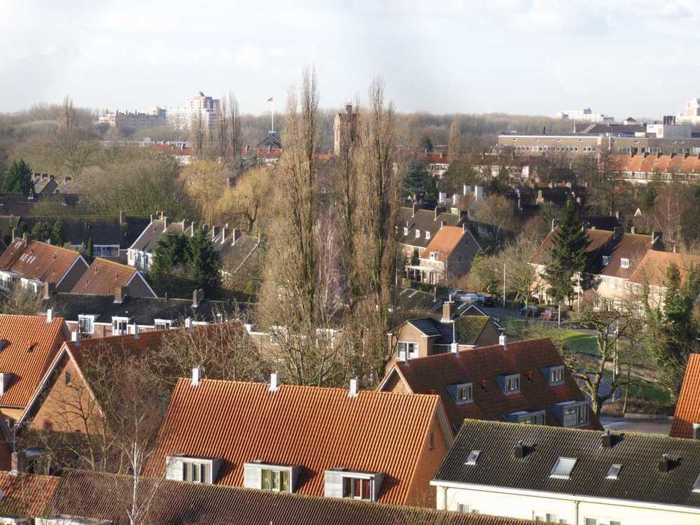 4-Vreewijktop1a.jpg
