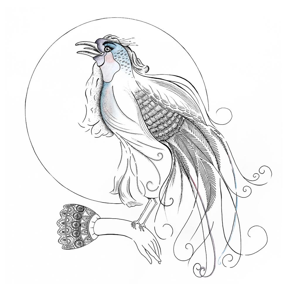 No. 3 Uccello del Paradiso ©darja brouwers