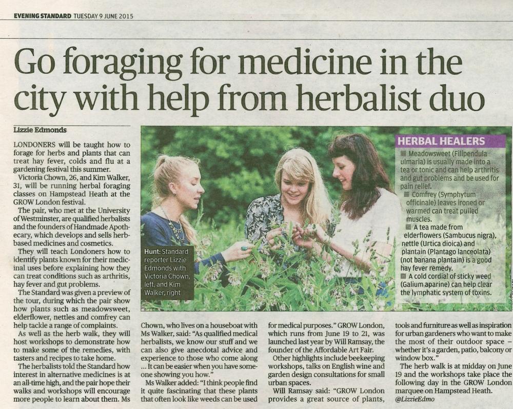 Evening Standard 09/06/15