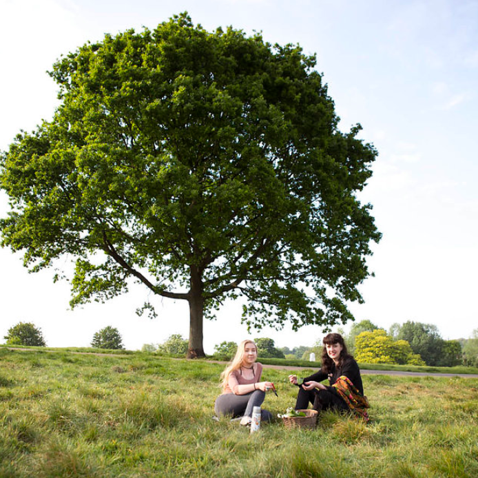 Interview with Alexa Skye Botanicals here...