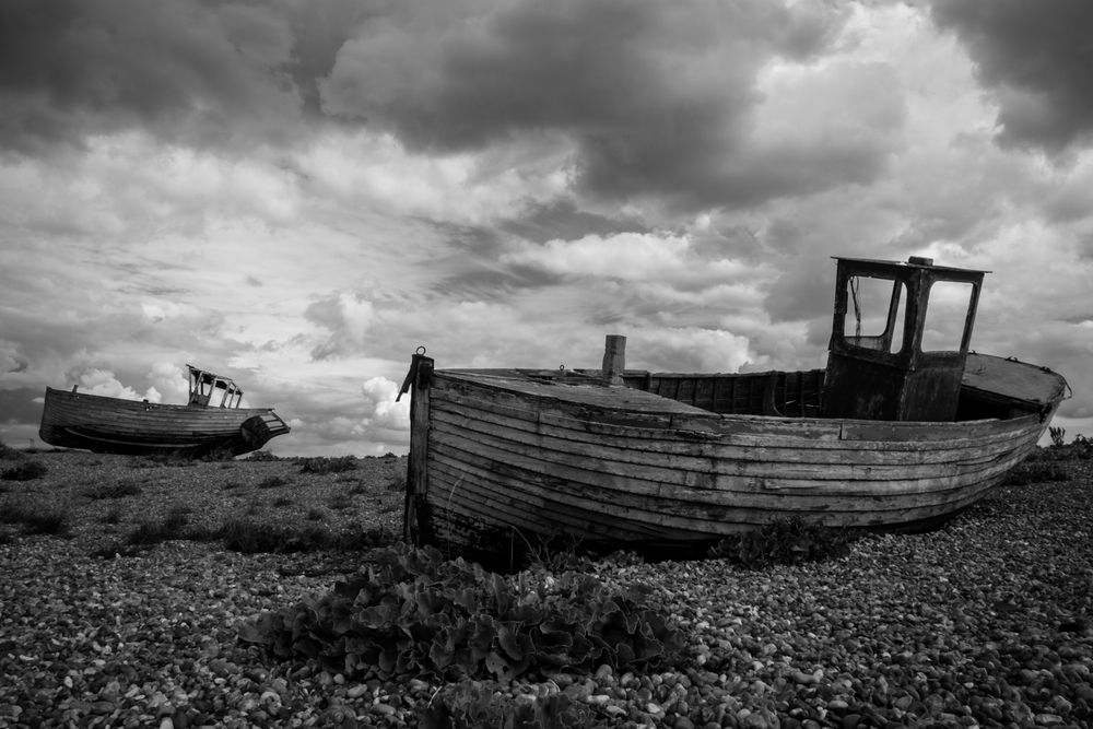 Dungeness BW  Small (2 of 4).jpg