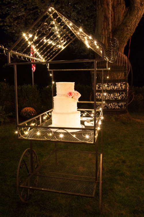 Detaille Weddings & Events 100 (27).jpg