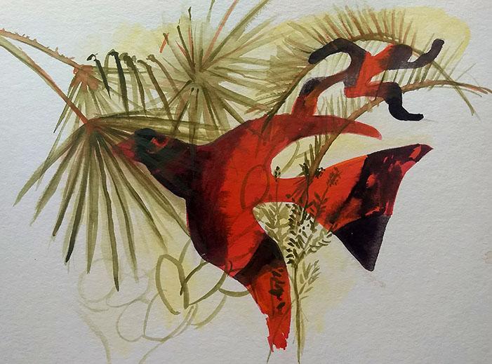 Anima bird.jpg