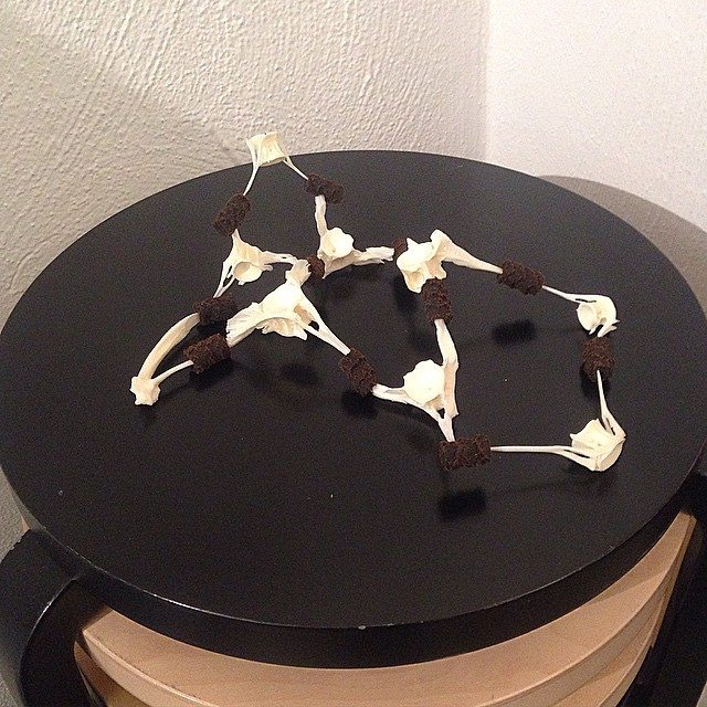 Ok Peter you won. This sculputure combines #hugdetta fishbones and #speltlaku Finn candies really creative way. #2015sdw #2015sff #2015wlh