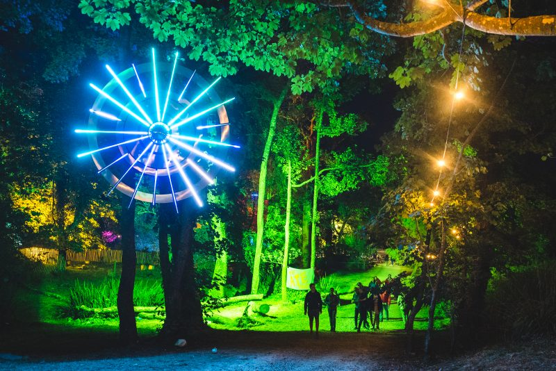 CAMPBESTIVAL_DINGLYDELL_WOODLAND_NIGHTLIGHTS_MIK4987-2-800x534.jpg
