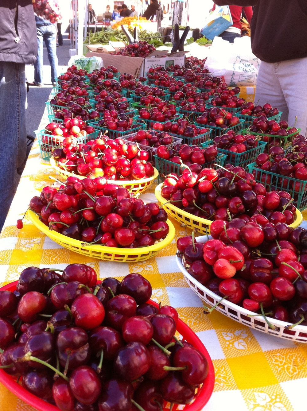 cherries - fmc photo3.JPG