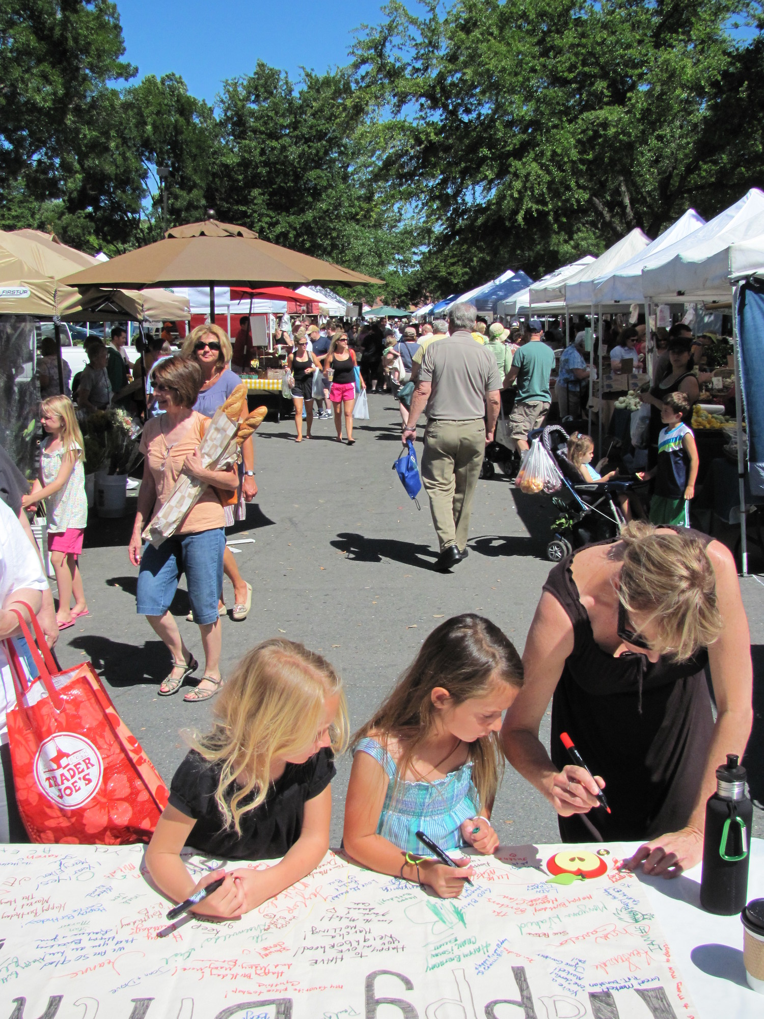 diablo valley farmers market at shadelands walnut creek