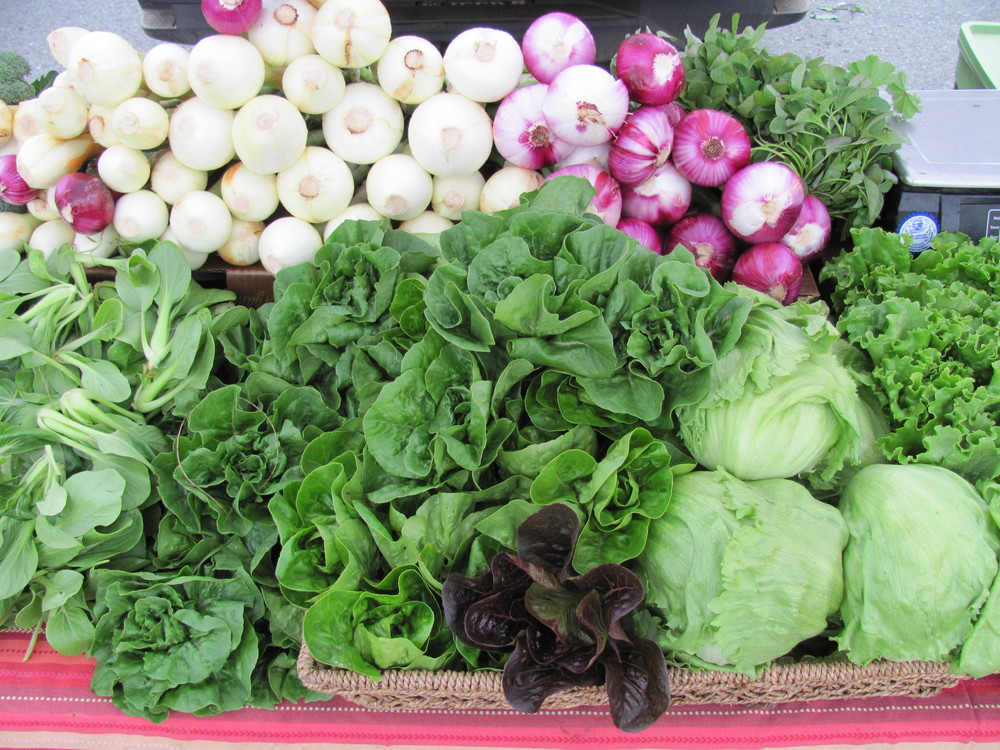 local organic vegetables at Fort Mason Center Farmers' Market