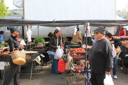 San Leandro Farmers' Market at Bayfair Center