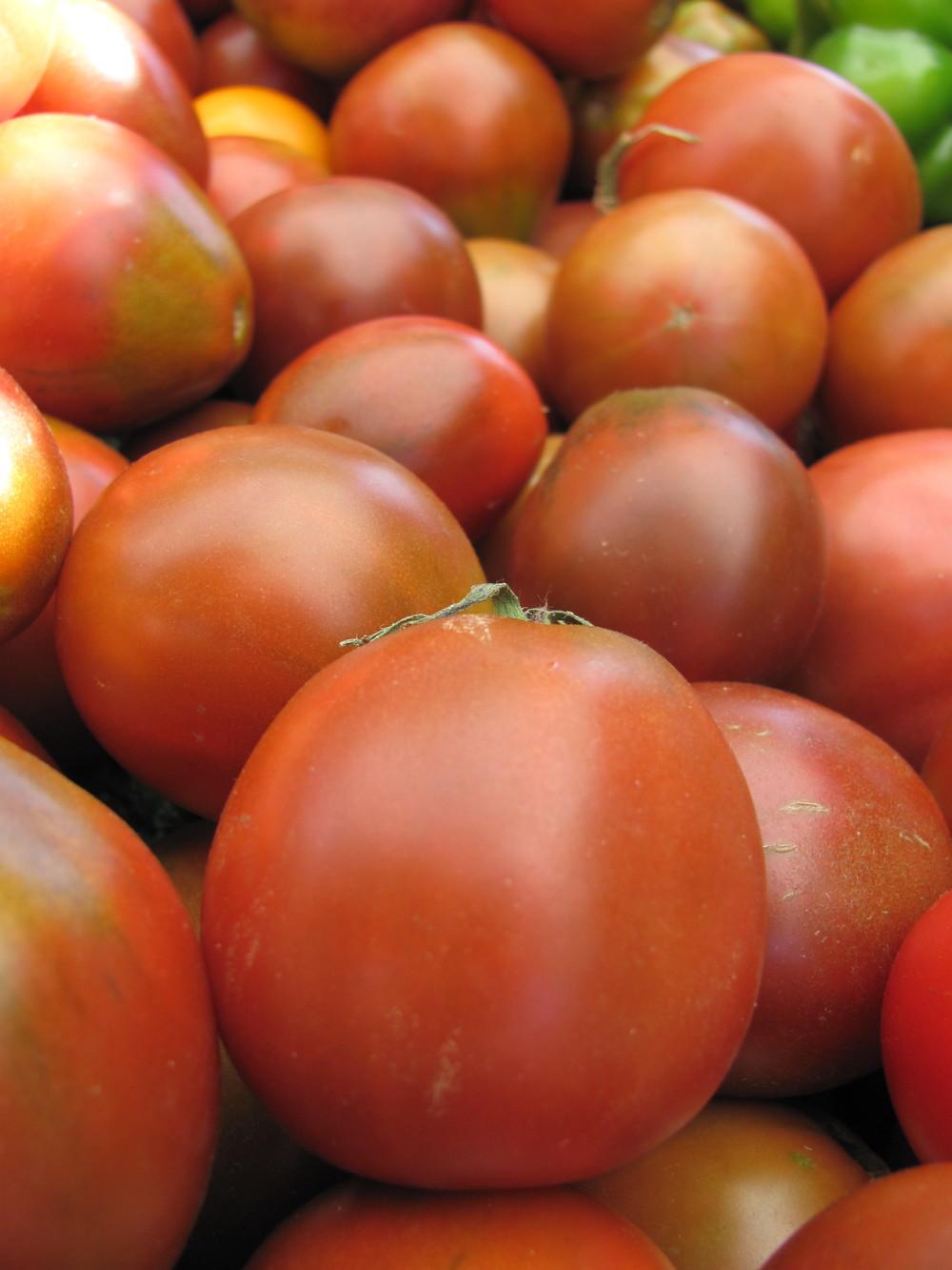 Saratoga Farmers Market early girl tomatoes