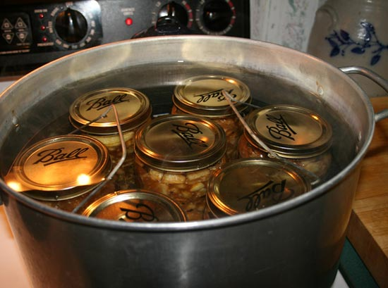 9--into-the-canner-for-boil.jpg