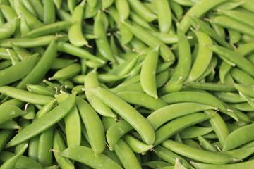 peas small.jpg