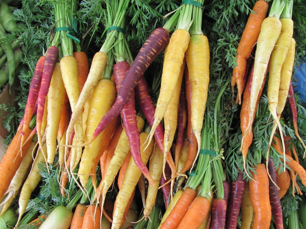 carrots IMG_0654.JPG