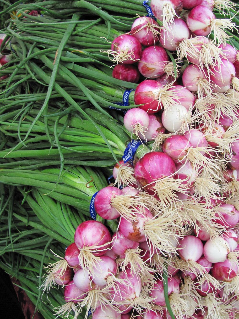 onions IMG_0625.JPG