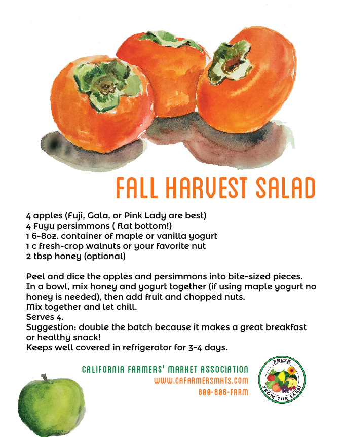 fall harvest salad-fuyu-01.jpg