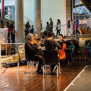 CPYO Brass Ensemble  Chavonnes Battery Museum  6.30PM – 7.30PM