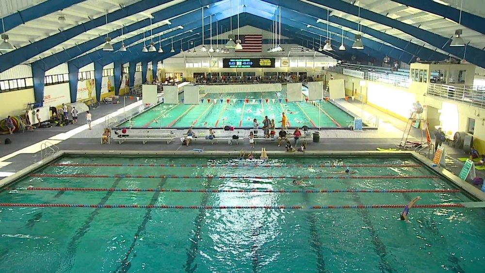 Orlando Winter Swim Training 2018