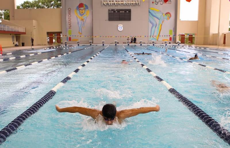 nataction.jpg