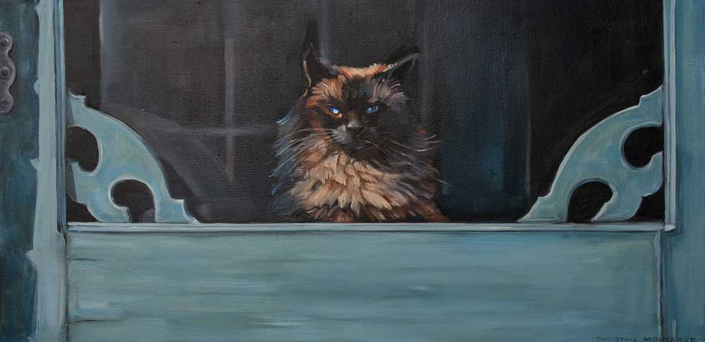 Ragdoll Cat -  Blue Eyes Inside