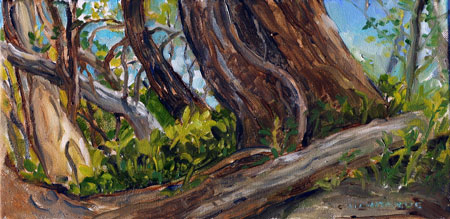 Plein Air Oil Painting Copyright Christine Montague 2009