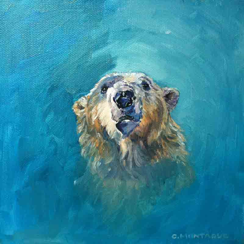"Polar Bear Portrait 1. ""Inukshuk"" 8"" x 8"" oil painting copyright Christine Montague"
